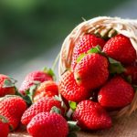 Water Rich Foods Which Are Easily Available