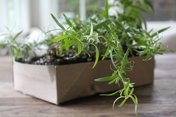 Kitchen Herb Garden Ideas40