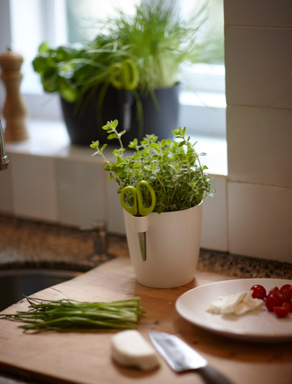kitchen herb garden ideas 1