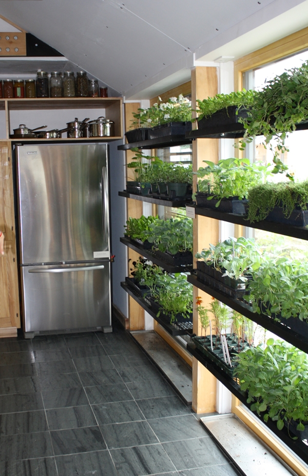 kitchen herb garden ideas 11
