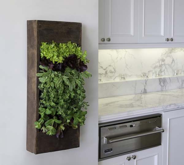 kitchen herb garden ideas 14