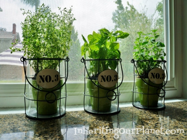 kitchen herb garden ideas 21