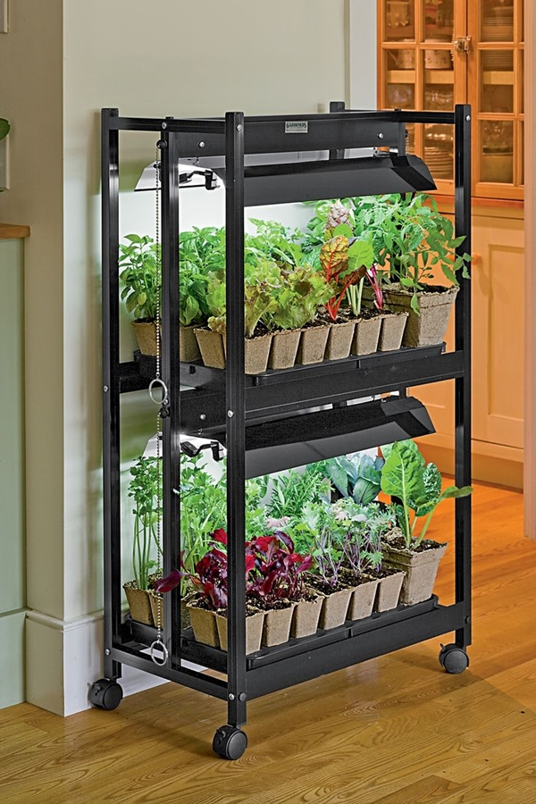 kitchen herb garden ideas 25