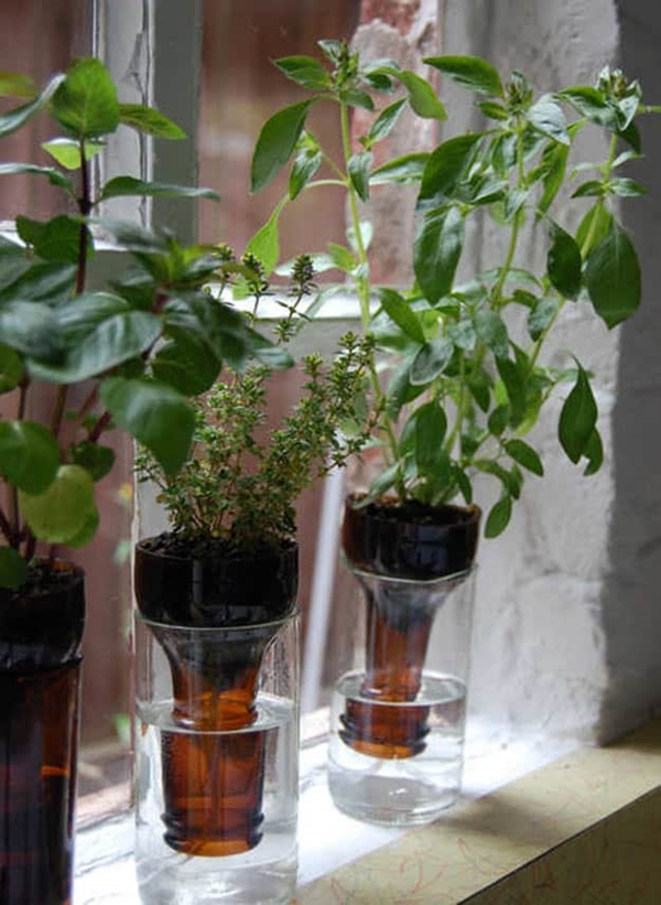 kitchen herb garden ideas 27