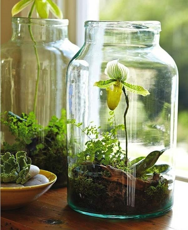 kitchen herb garden ideas 28