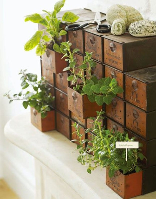 kitchen herb garden ideas 3
