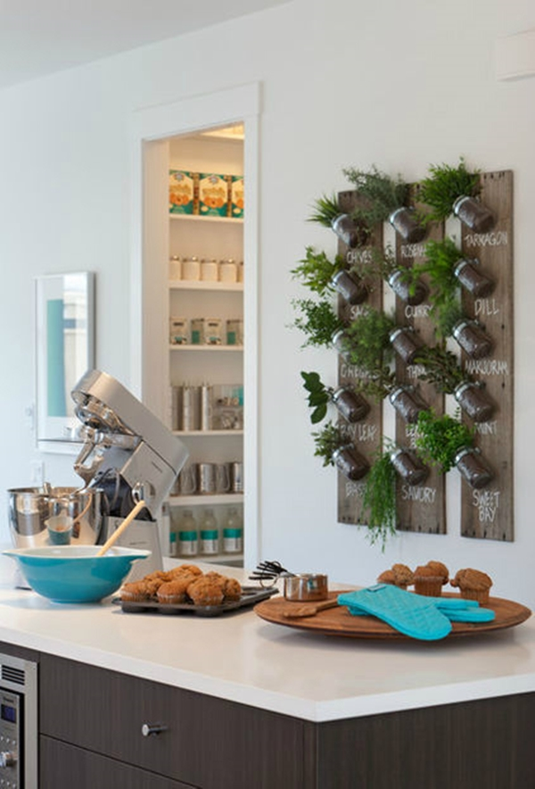 kitchen herb garden ideas 30