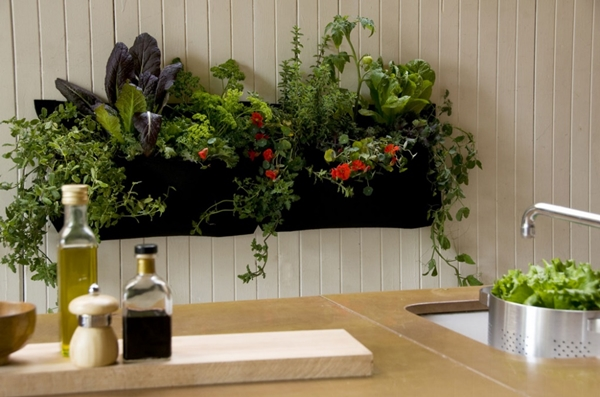 kitchen herb garden ideas 5