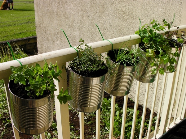 kitchen herb garden ideas 6